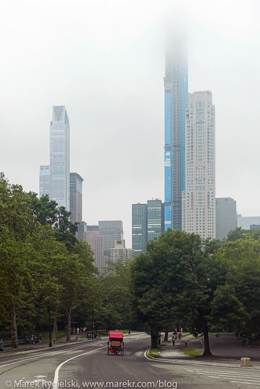 Central Park at foggy morning.