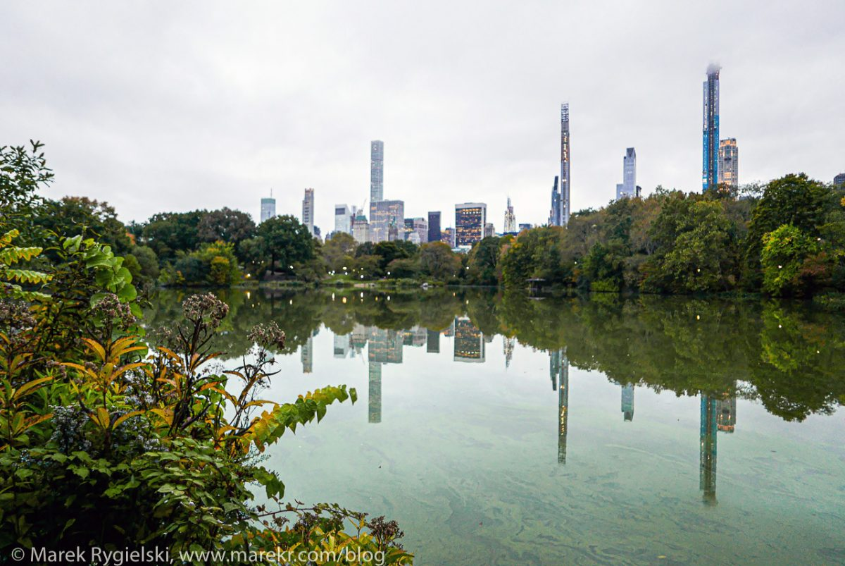 Central Park, The Lake.