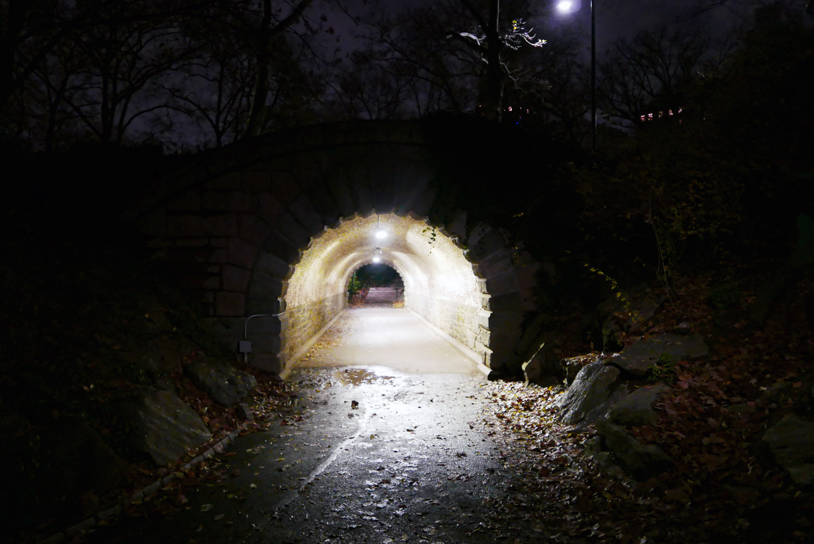 Inscope Arch - Central Park.