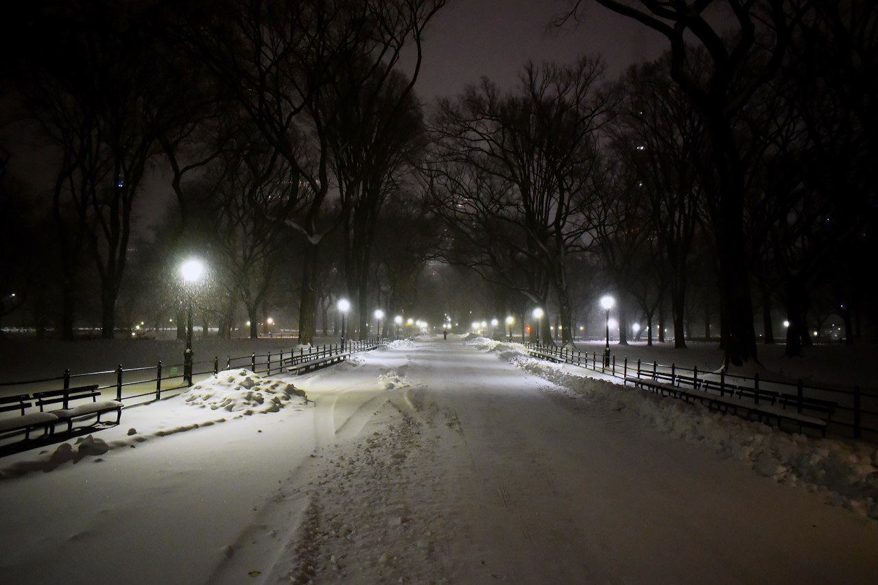 The Mall, Central Park.